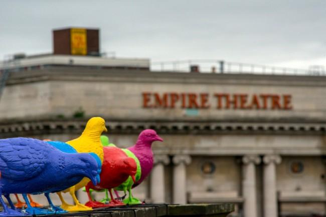 pigeons biennale art