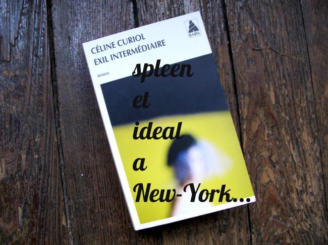 roman séparation new york
