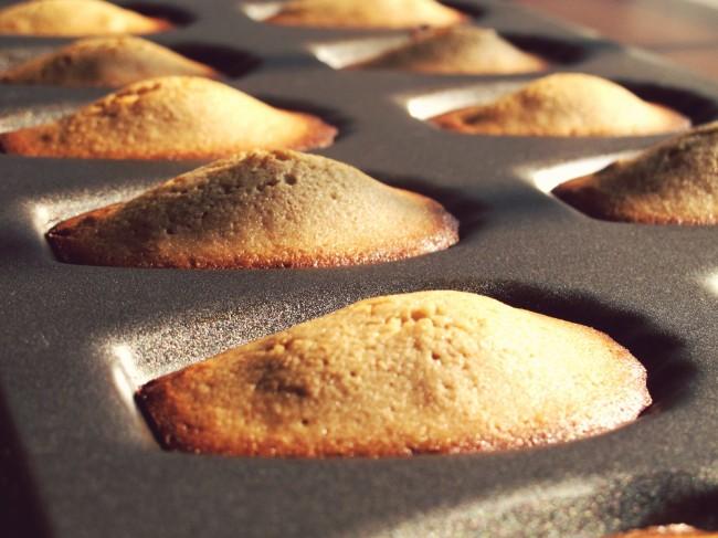 madeleines farine de chataigne