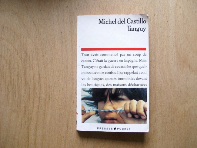 premier roman michel de castillo