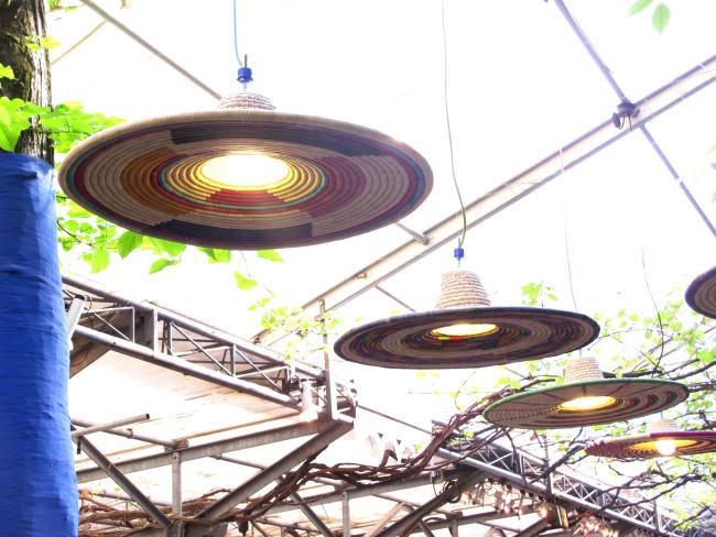 pet lamp abyssinie