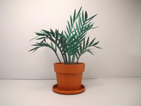 plante papier set design