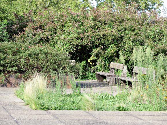 Le jardin sur le toit de la gare de lyon perrache for Le jardin 69008 lyon