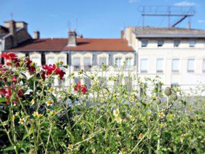jardins suspendus lyon perrache