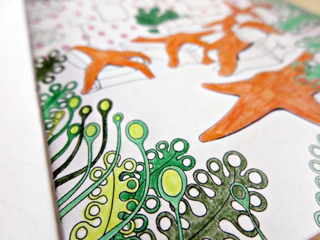 livre coloriage semiose