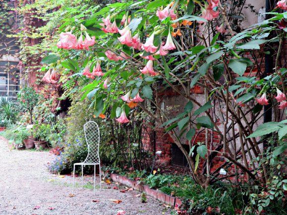 orto botanico milano