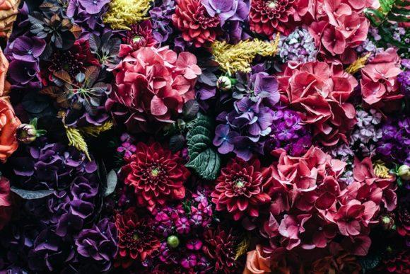complètement flou fleurs