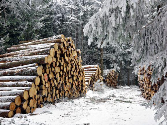 neige-pilat
