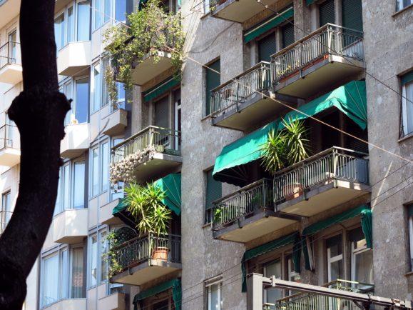 végétation à Milan
